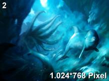 Ecco the Dolphin Wallpaper 1.024x768px